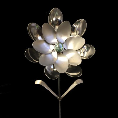 Cleopatra - Flower©