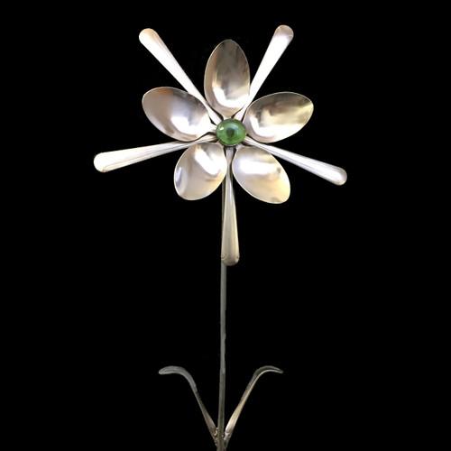 Andromeda - Flower©
