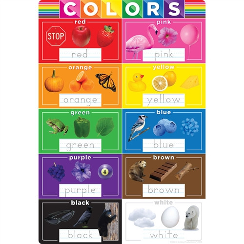Smart Poly Colors Chart - 13 in. X 19 in.