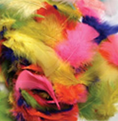Feathers Bright Hues