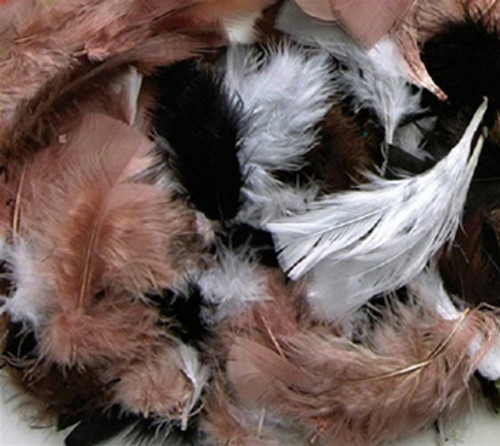 Assrt Quill Feathers Natural Color
