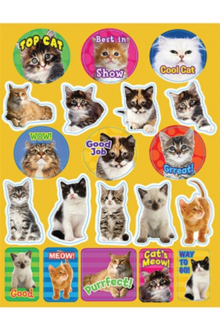 Motivational Cats Theme Stickers