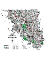 Holt County Missouri 2006 Wall Map