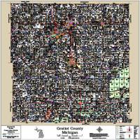 Gratiot County Michigan 2017 Wall Map