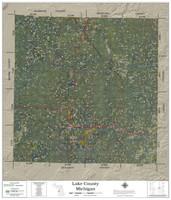 Lake County Michigan 2021 Aerial Wall Map