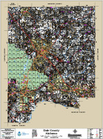 Dale County Alabama 2017 Wall Map