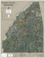 Rankin County Mississippi 2020 Aerial Wall Map