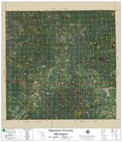 Ogemaw County Michigan 2020 Aerial Wall Map