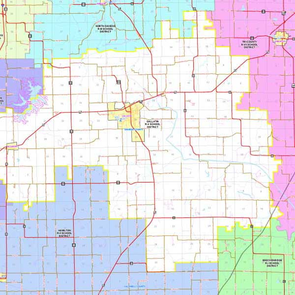 Mapping Solutions Custom District Map