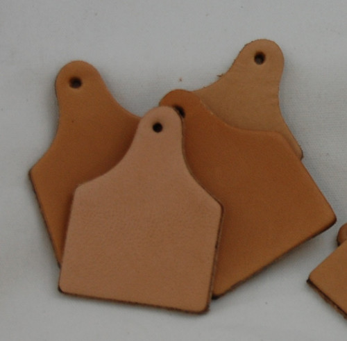 Bulk Large Ear Tags (10 pack)