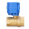 "U.S. Solid Motorized Ball Valve- 1"" Brass Electrical Ball Valve with Standard Port, 9-24 V DC, 2 Wire Reverse Polarity"