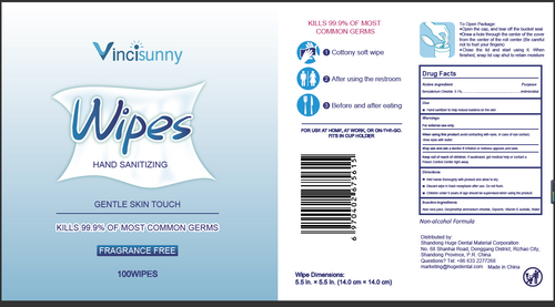 Vincisunny Hand Sanitizing 100 Wipes