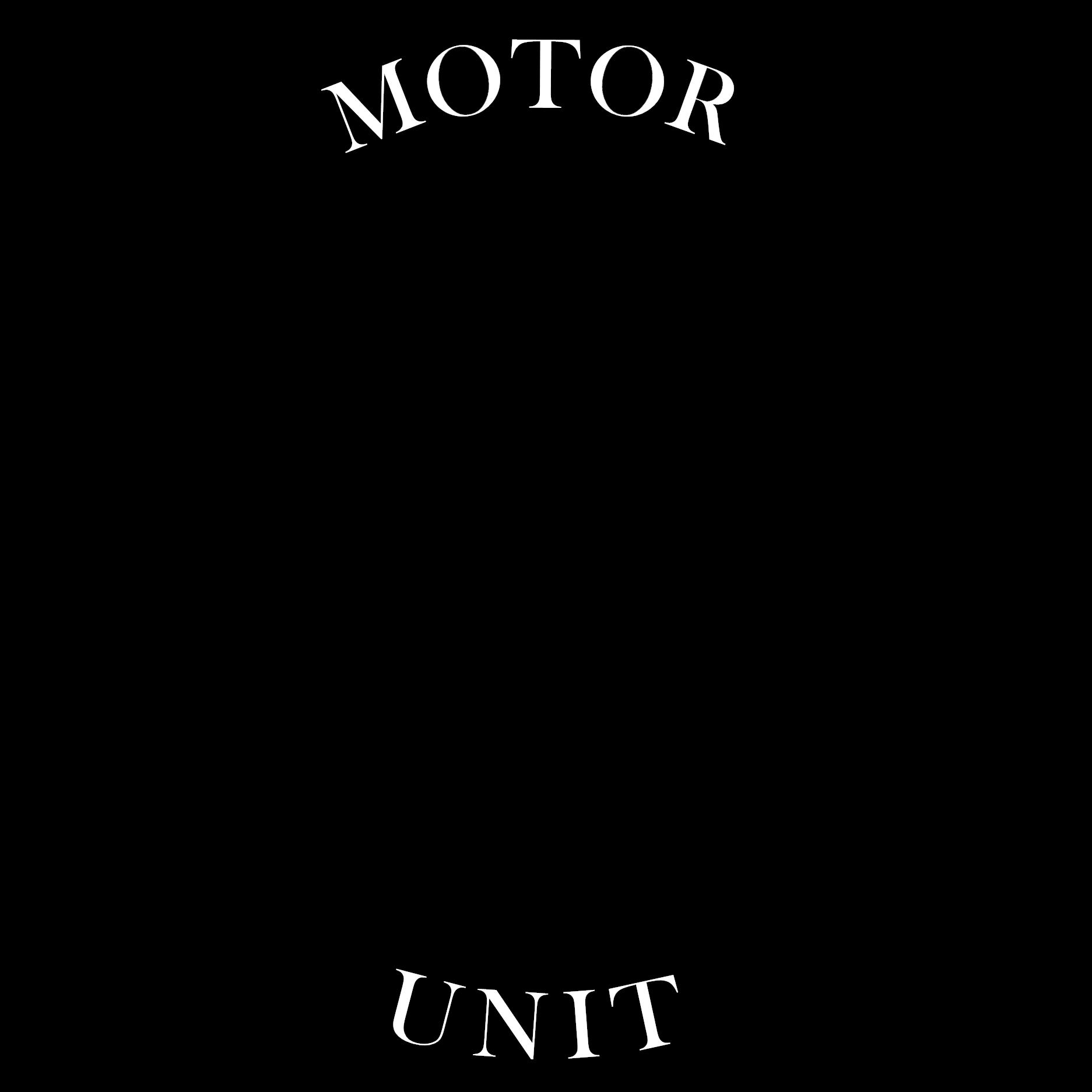 motor-unit.png