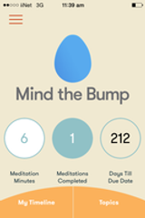 Mind The Bump App Review