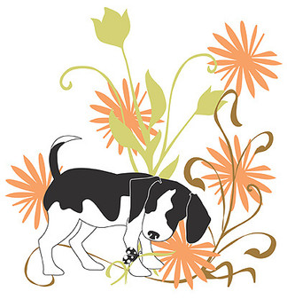 ePattern Beagle Transfer