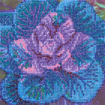 "Diamond Art Kit 8""x 8"" Beginner Purple Plant"