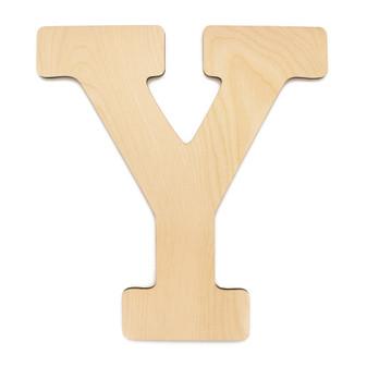 """Essentials By Leisure Arts Wood Letter 9.5"""" Birch Y"""