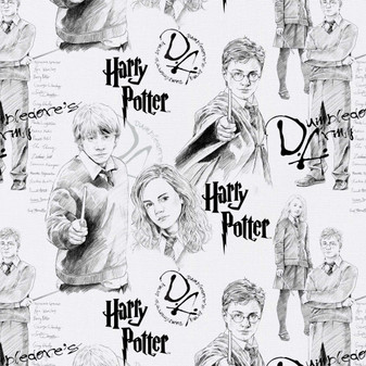 Harry Potter Mystery of Magic 8 yard Cotton fabric by the bolt