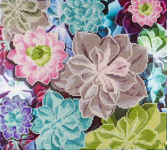 "Diamond Art Kit 14""x 16"" Advanced Succulents"