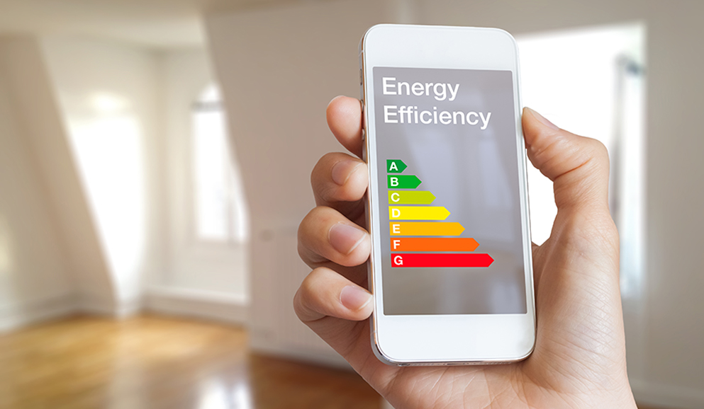 person holding phone looking at the home energy audit app