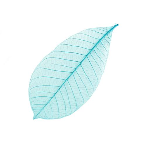 "[Clearance] Decorative Leaf Blue 5.1"" (50pcs/pack)"