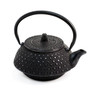 Spotted Nanbu Cast Iron Teapot 17 oz