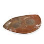 "Kanayama Matte Brown Organic Shaped Plate 11.26"" x 7.01"""