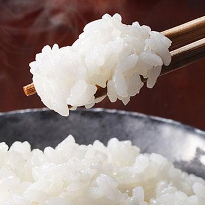 Rice & Mochi