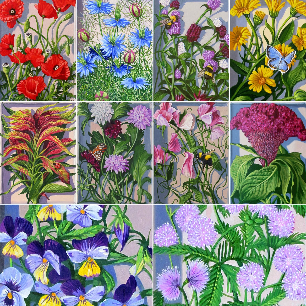 Favorite Flowers Seed Collection