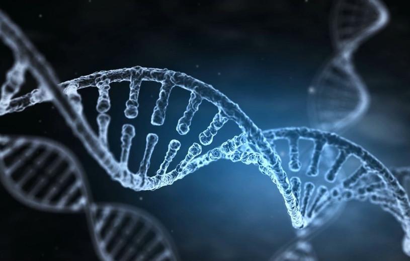 Importance Of Peptide Technology