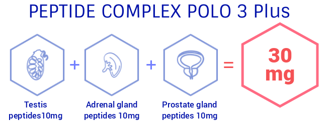 peptide-complex-polo-banner.jpg