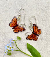 "Monarchs and their migration are yet another marvel of the natural world. These Monarch Butterfly Earrings are a tribute to their beauty and fortitude. They are handcrafted from jeweler's brass and Sterling silver, and then carefully handpainted. They measure 7/8"" x 7/8"" and are light as a butterfly."
