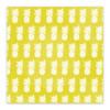 Vellum | Pineapple Crush 8x8