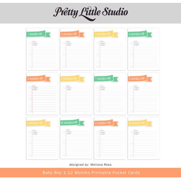 Printable | Baby Boy 1-12 Cards