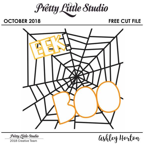 FREE Cut File | Spider Web