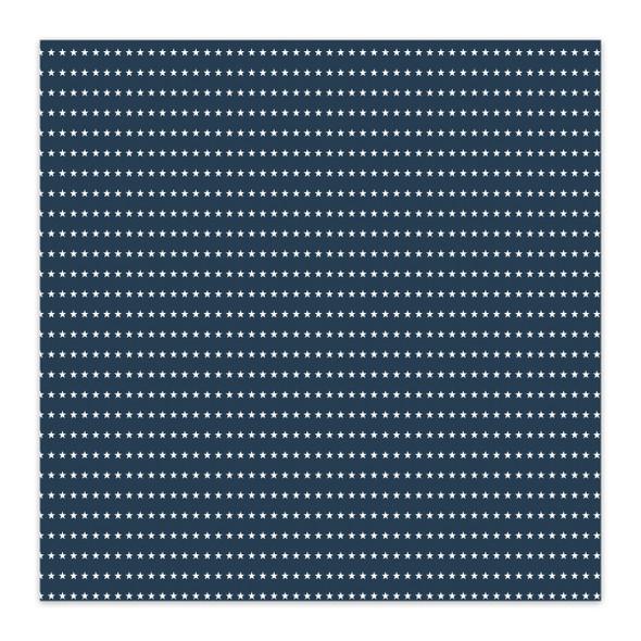 Paper | Stargazer 8x8
