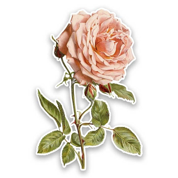 Vintage Die-Cut | Lyon Rose