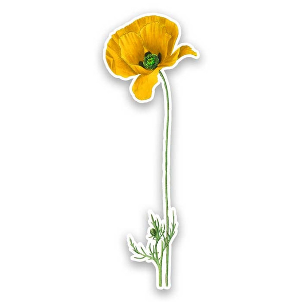 Vintage Die-Cut | Yellow Poppy
