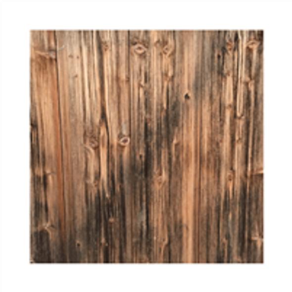 Paper | Pine Tree