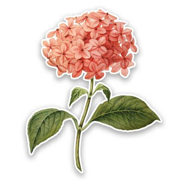 Vintage Die-Cut   Pink Hydrangea