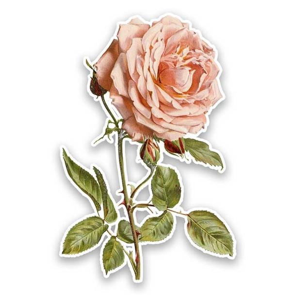 Vintage Die-Cut | Lyon Rose