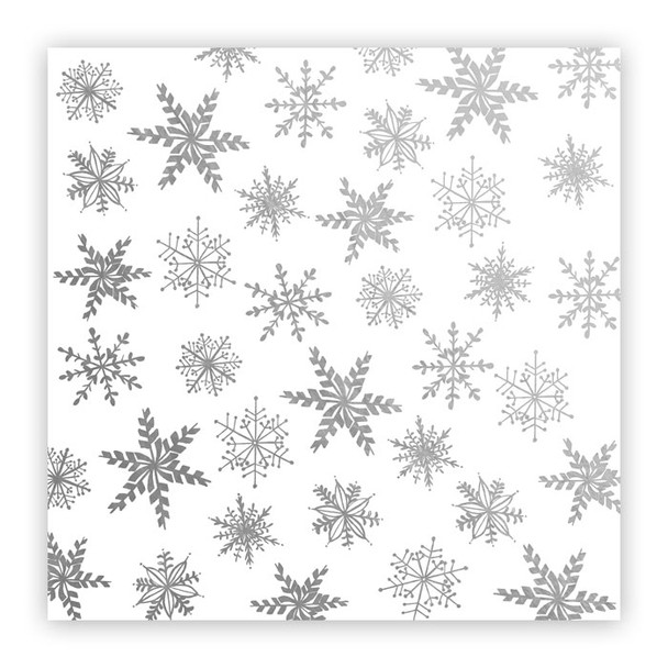 Metallic Vellum | December Snow | Silver