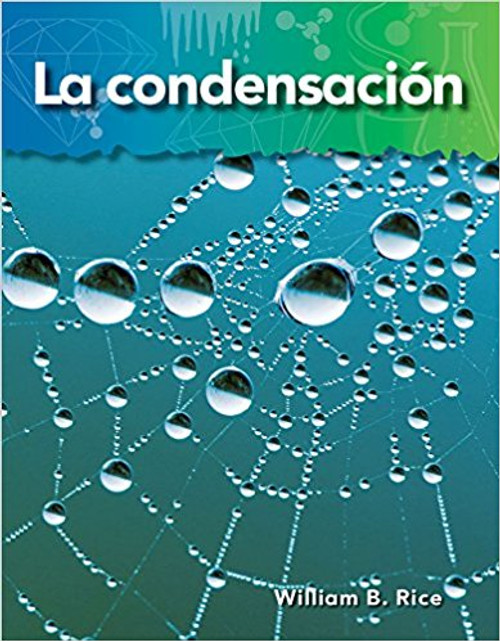 La condensación (Condensation) by William B Rice