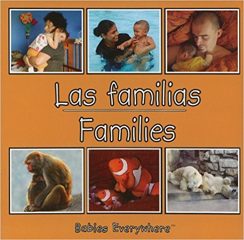Familias/Families by Star Bright Books
