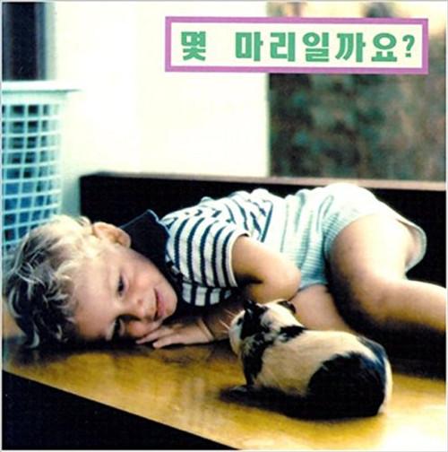How Many? (Korean) by Cheryl Christian