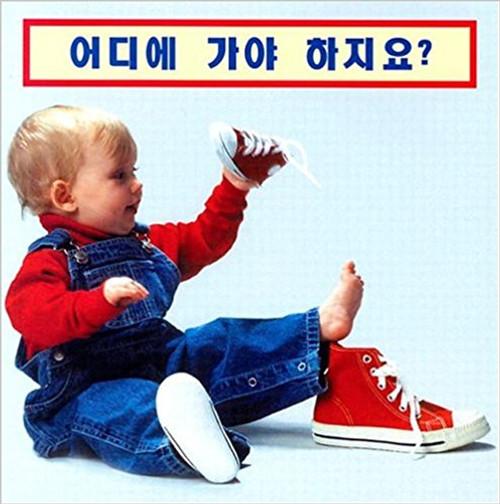 Where Does It Go? (Korean/English) by Cheryl Christian