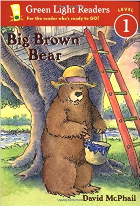 Big Brown Bear by David M McPhail