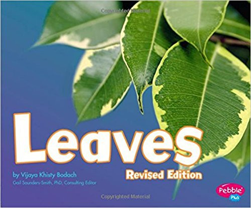 Leaves (Plant Parts) by Vijaya Khisty Bodach