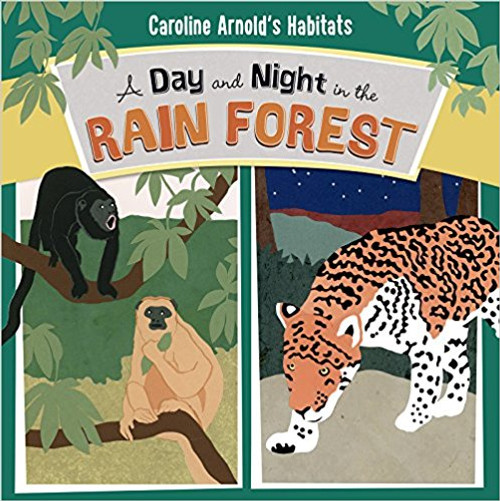 A Day and Night in the Rain Forest by Caroline Arnold