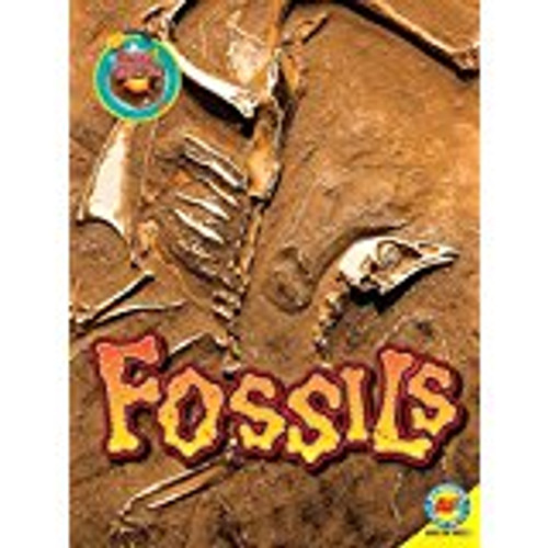 <p>Fossils is a title in the Focus on Earth Science series. This series guides readers through the fundamentals of geology. Each title explores the composition of rocks and minerals, geological processes, and the significance of geology in our modern lives. Stunning photographs and intriguing facts are sure to inspire a thirst for knowledge.</p>
